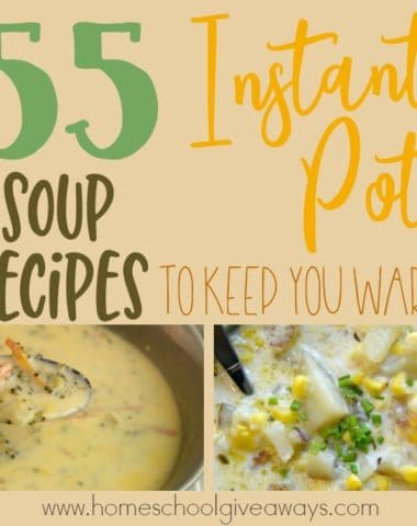 Fall has officially started in the US and that means temperatures will be dropping soon. It's the perfect time for some delicious soup! Check out these easy and delicious Instant Pot Soup Recipes to keep you warm this Fall and Winter. :: www.homeschoolgiveaways.com