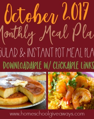 This month I have created not one, but TWO Monthly Meal Plans! One follows the format you have come to know and love. And the other is full of Instant Pot recipes with a few salads sprinkled in for variety! :: www.homeschoolgiveaways.com