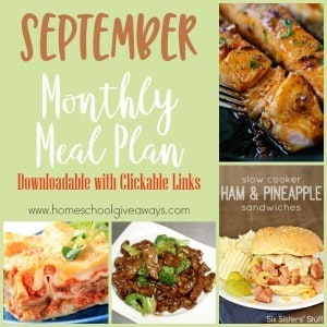 September is one of the busiest months, as school is in full swing and fall sports are going strong. Sometimes getting back into a regular meal planning routines is tough. Grab this September Monthly Meal Plan to help! :: www.homeschoolgiveaways.com