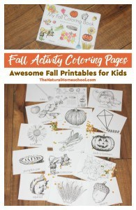fall-activity-coloring-pages-fall-printables-for-kids