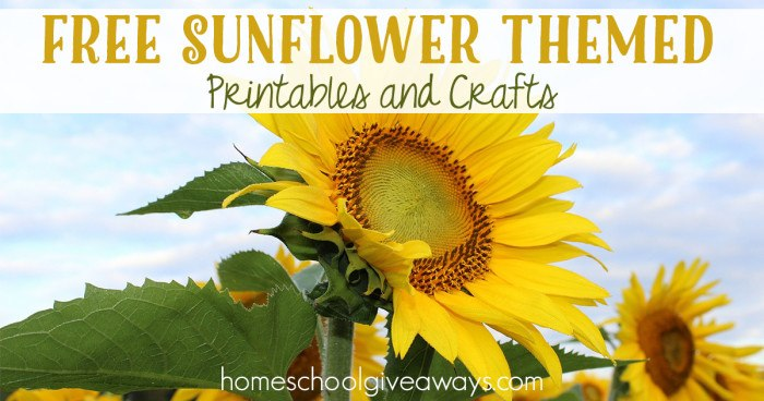 graphic about Printable Pictures of Sunflowers titled Totally free Sunflower Themed Printables and Crafts - Homeschool