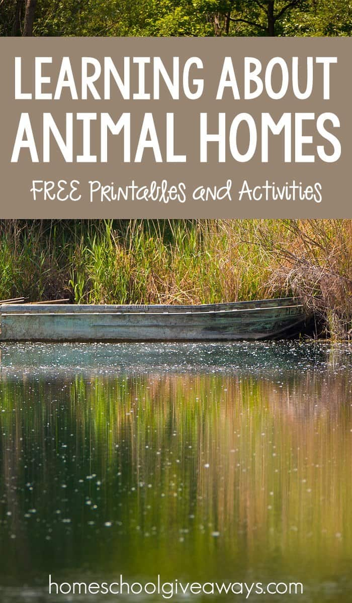 Learn About Animals » PAWS
