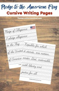 american-flag-with-pledge-cursive-pin-copy