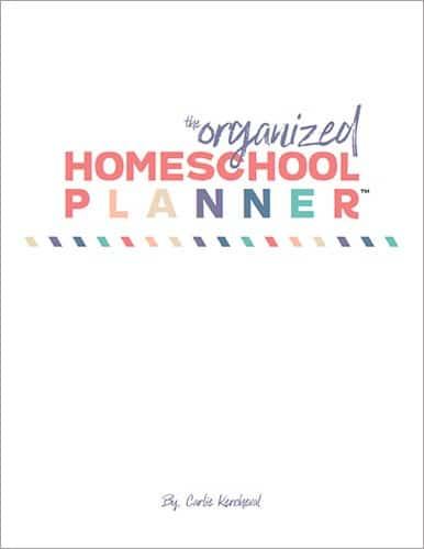 organized-hs-planner