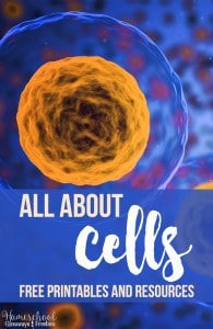 All About Cells FREE Printables and Resources