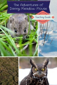 The-Adventures-of-Danny-Meadow-Mouse-Teaching-Guide-683x1024