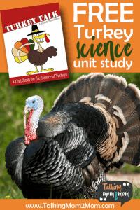 TurkeyTalkPIN-683x1024