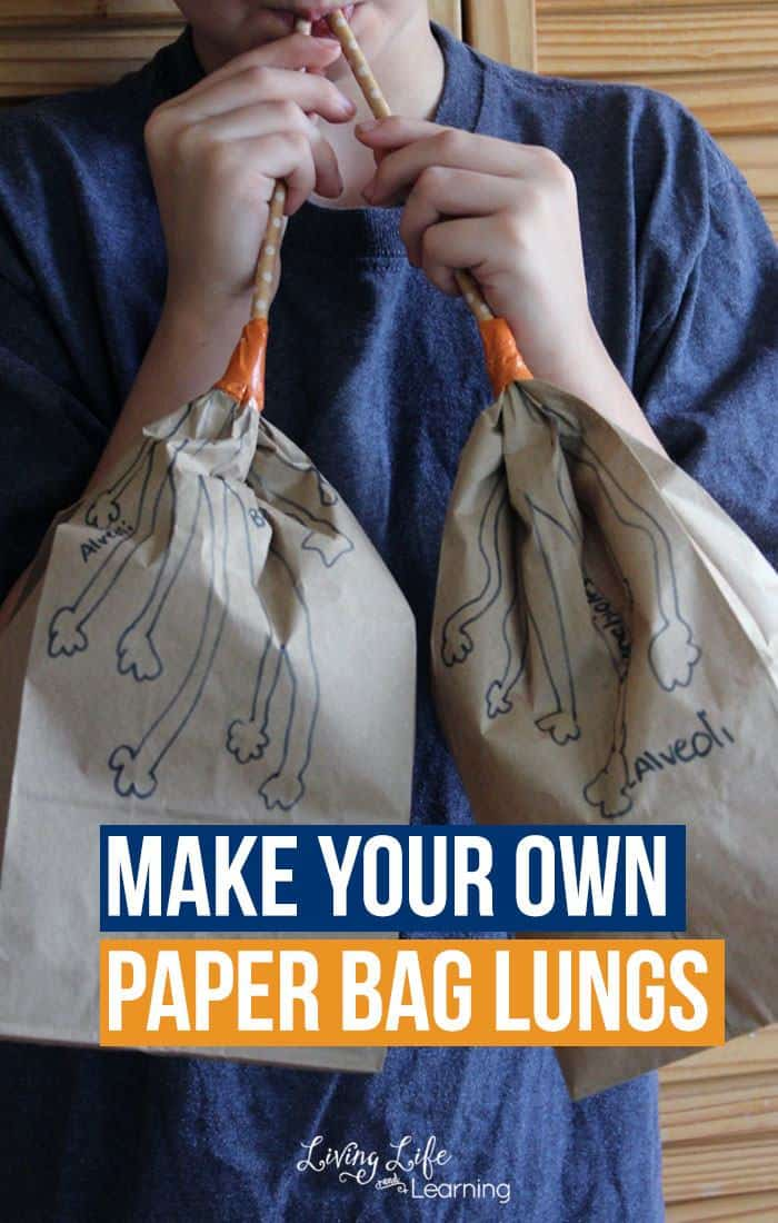 Free Make Your Own Paper Bag Lungs Activity