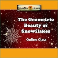 Geometric-Beauty-of-Snowflakes-HSG-Thumbnail-200X200px