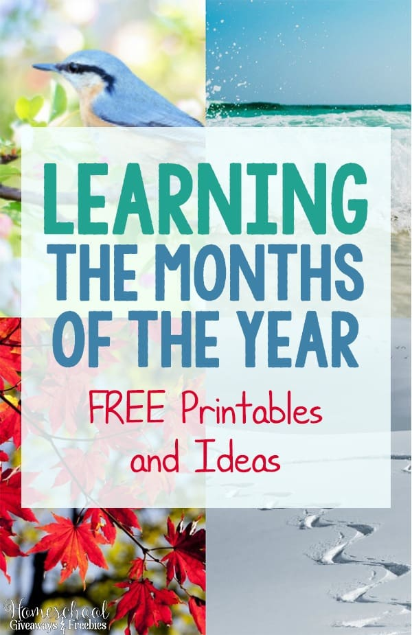 Learning The Months Of The Year Free Printables And Ideas on homeschool free printable curriculum