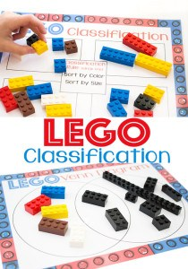 Lego-classification-pin