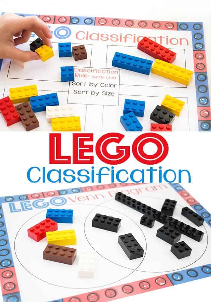 Lego-classification-pin