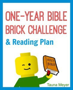 One-Year-Bible-Brick-Challenge-and-Reading-Plan-Main-Cover-Reg