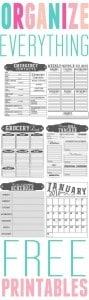 Organize-Everything-Free-Printables-by-Mountain-View-Mama-1
