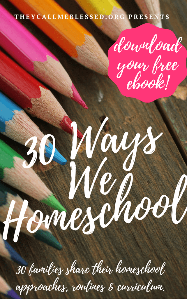 wsi-imageoptim-30-Ways-We-Homeschool-ebook-cover-2