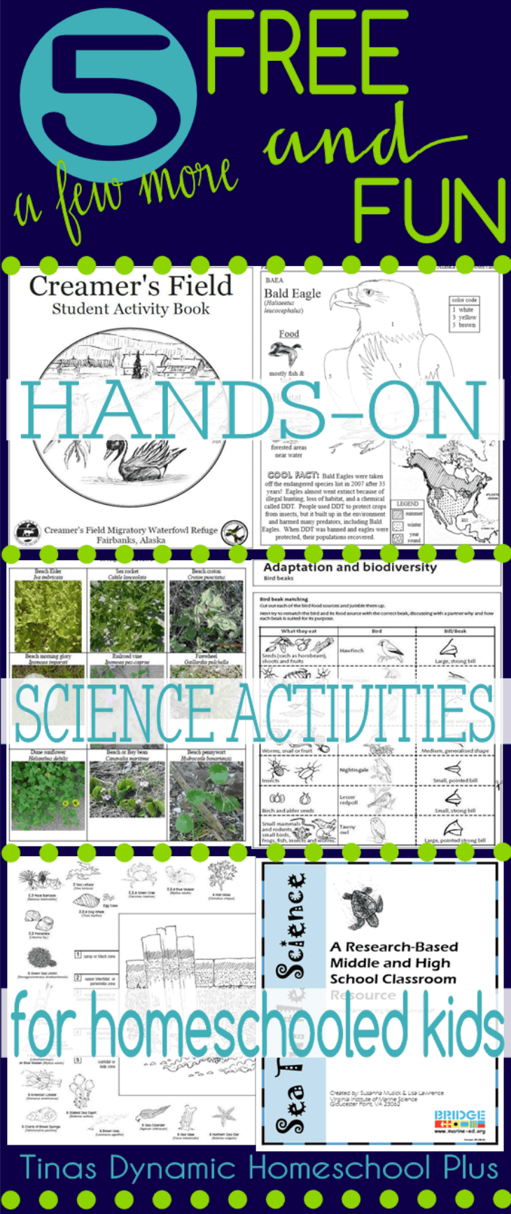 5-FUN-and-FREE-Hands-on-Science-Activities-for-Homeschooled-Kids-@-Tinas-Dynamic-Homeschool-Plus