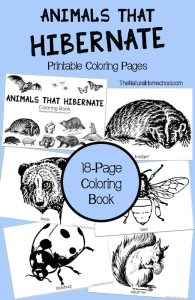 animals-that-hibernate-coloring-book