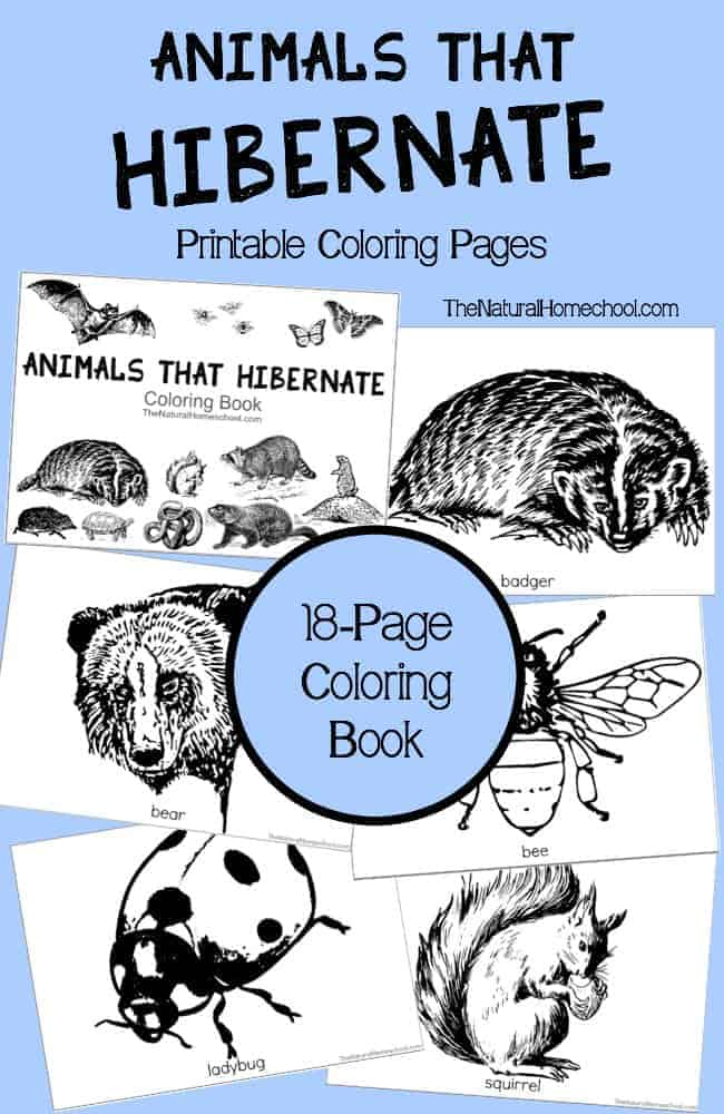 cenozoic animals coloring pages - photo#23