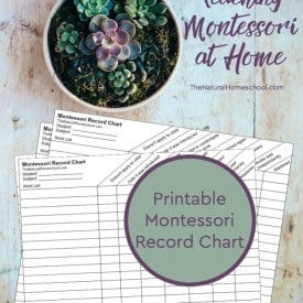10-Things-to-know-about-teaching-Montessori-at-home-record-chart-650x978