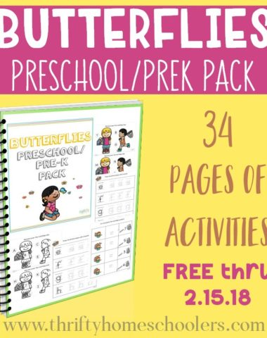 Preschoolers will love working through this Butterflies Preschool/PreK Pack as they welcome the new season. But it's only FREE for a LIMITED TIME! Hurry...offer expires Thursday, February 15, 2018! :: www.homeschoolgiveaways.com