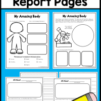 FREE-Human-Body-Report-Pages-This-Reading-Mama
