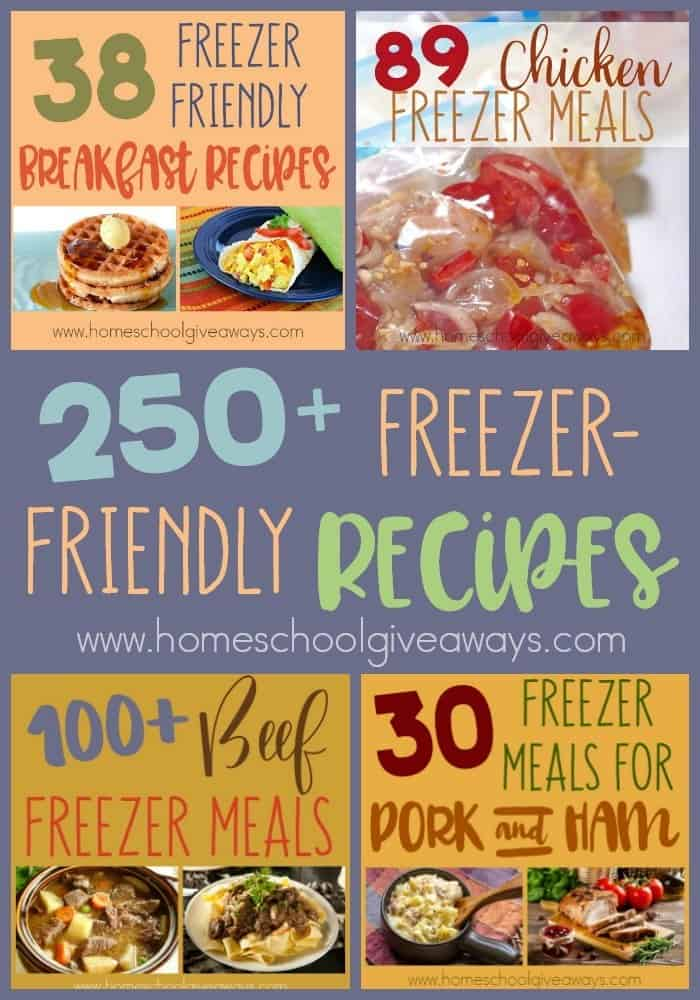 Freezer Meals are wonderful to have on hand for busy nights, during sickness, after the birth of a child or even during the holidays when family is visiting. Whatever the occasion, these 250+ Freezer-Friendly Recipes are sure to please everyone in your house! :: www.homeschoolgiveaways.com
