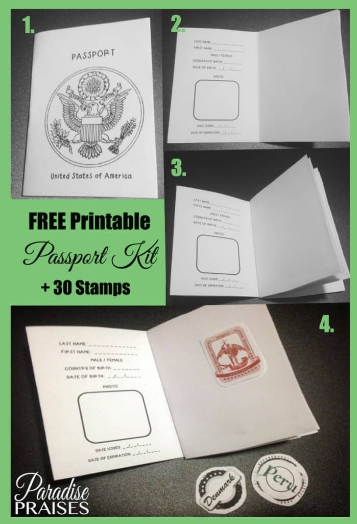photograph relating to Passport Printable called Free of charge Printable Pport Sport for 30 Nations