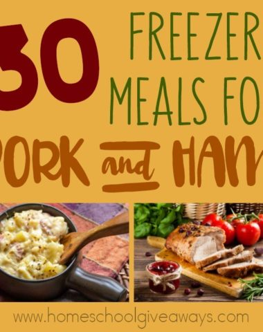 Freezer Meals are wonderful for quick and easy meals, saving money and preparing ahead of time for surgeries or other life events. Check out these delicious recipes for 30 Pork & Ham! :: www.homeschoolgiveaways.com