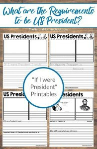 What-are-the-Requirements-to-be-President-with-If-I-were-President-Printables-pin
