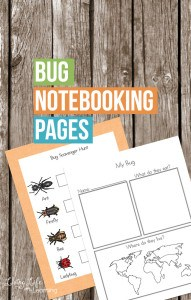 bug-notebooking-pages
