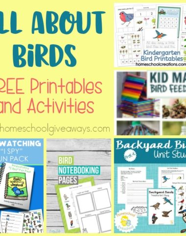 Spring is in the air and that means birds are chirping and singing. Take some time to get out and study those around you this year with these FREE printables and activities! :: www.homeschoolgiveaways.com