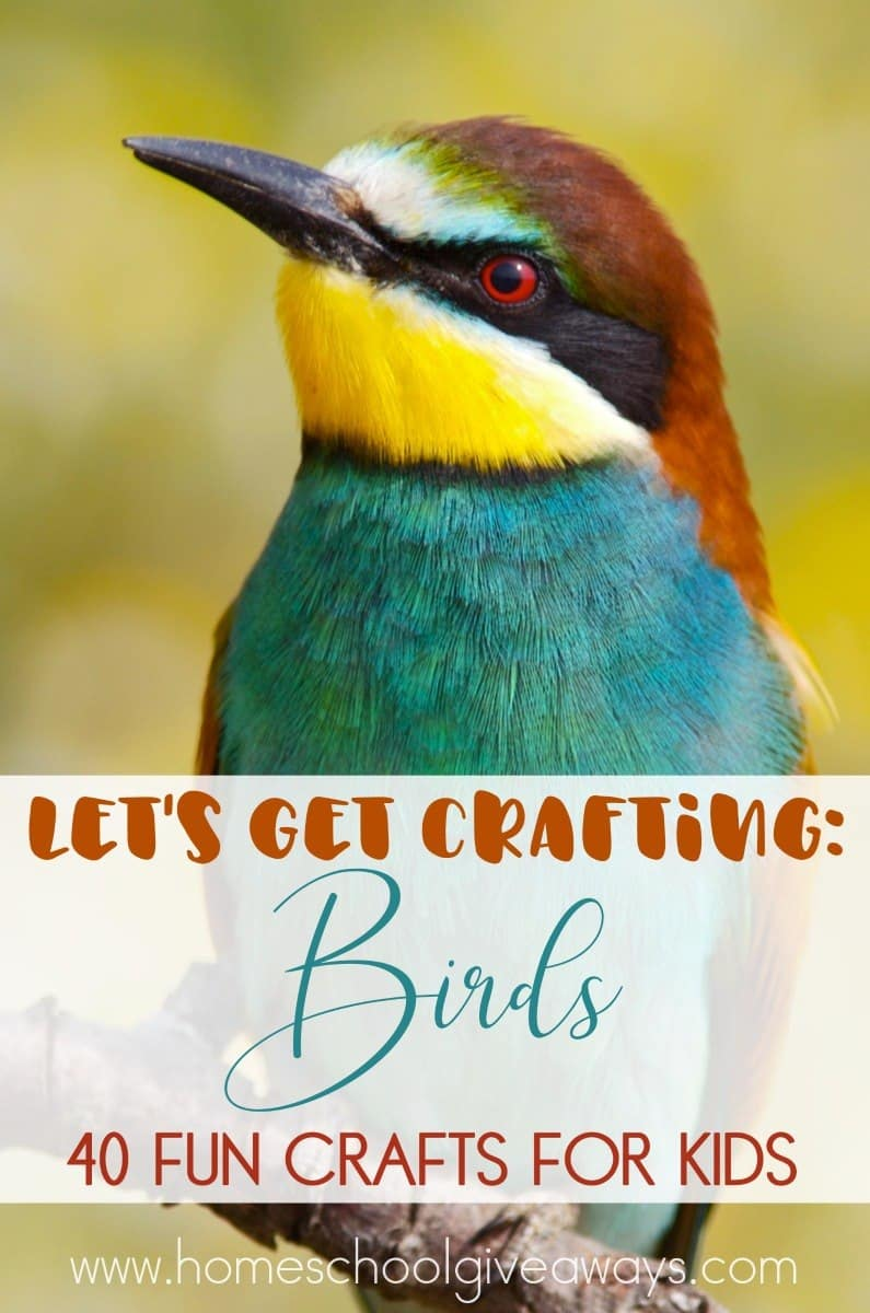 Whether you\u0027re itching for more Spring weather studying birds or just like crafting & Let\u0027s Get Crafting: Birds | Homeschool Giveaways