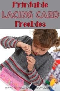 Lacing Cards_pin