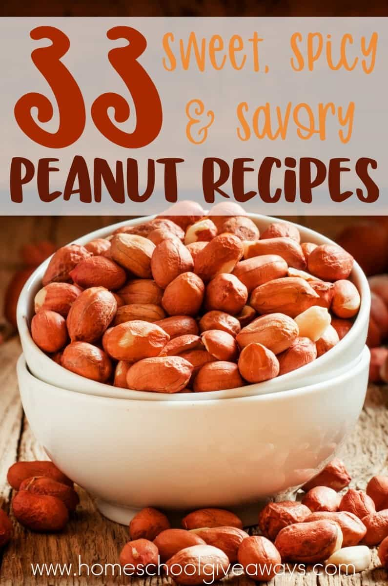 Peanuts are always my go-to snack, but after a while I want a little creativity. I like to have both sweet & salty together. Then, you have the savory dishes...YUM! Check out these delicious Sweet, Salty & Savory Peanut Recipes! :: www.homeschoolgiveaways.com