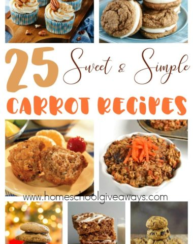 April 4th is International Carrot Day! Why not celebrate with some new and delicious Sweet & Simple Carrot Recipes! Check these out for inspiration! :: www.homeschoolgiveaways.com