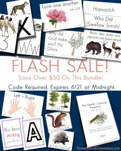 Parent Bundle Flash SaleHSG