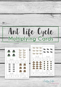 ant-life-cycle-multiplying-cards