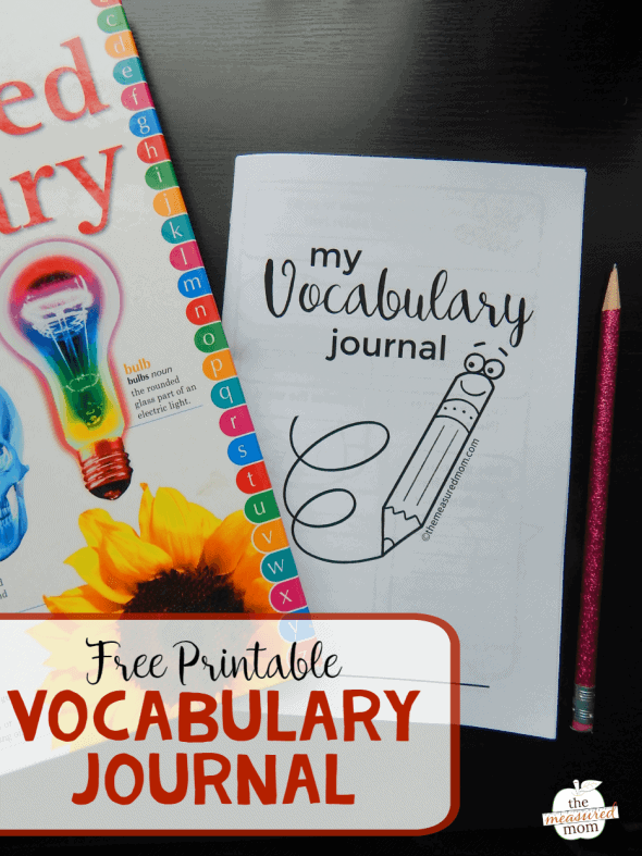 vocabulary-journal-590x787