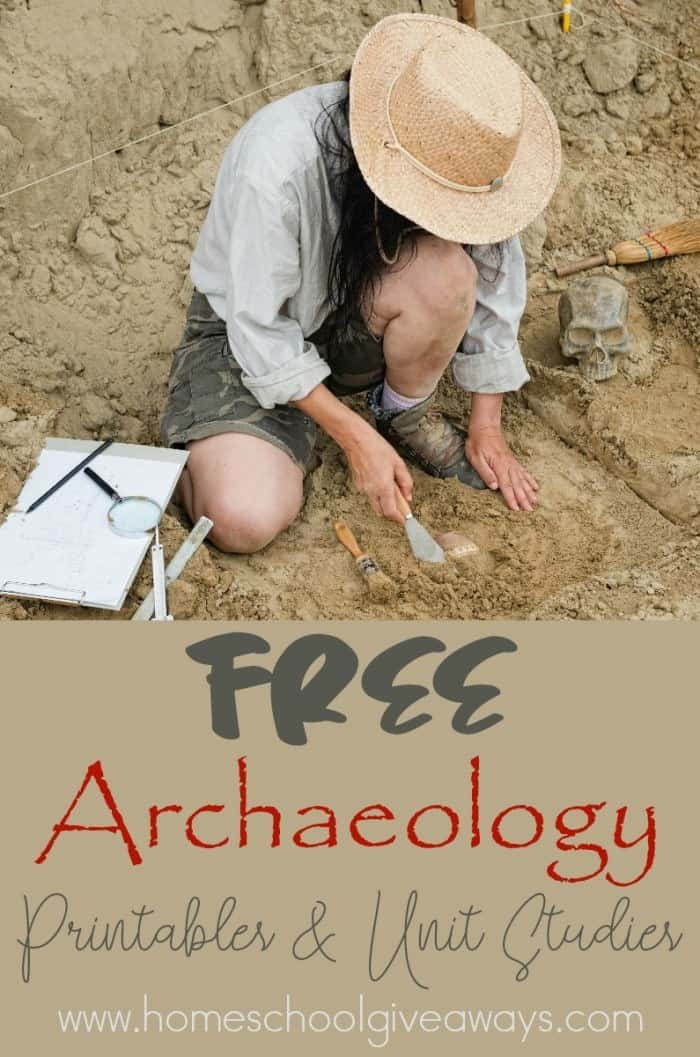 Archaeology_pin