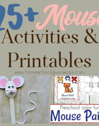 Mice may not be welcome in your home, but they sure make for some fun studies! Check out these 25+ Mouse Activities & Printables. :: www.homeschoolgiveaways.com