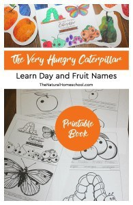 The-Very-Hungry-Caterpillar-Craft-Day-and-Fruit-Names-Printable-Book-pin1