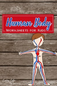 human-body-worksheets-for-kids