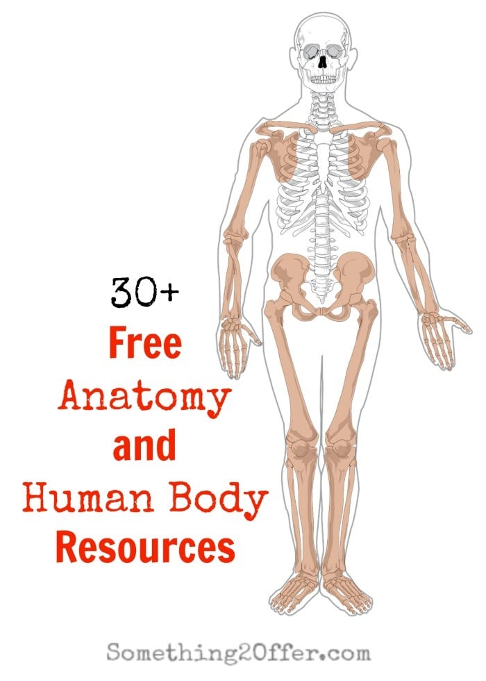Anatomy-and-Human-Body-Resources