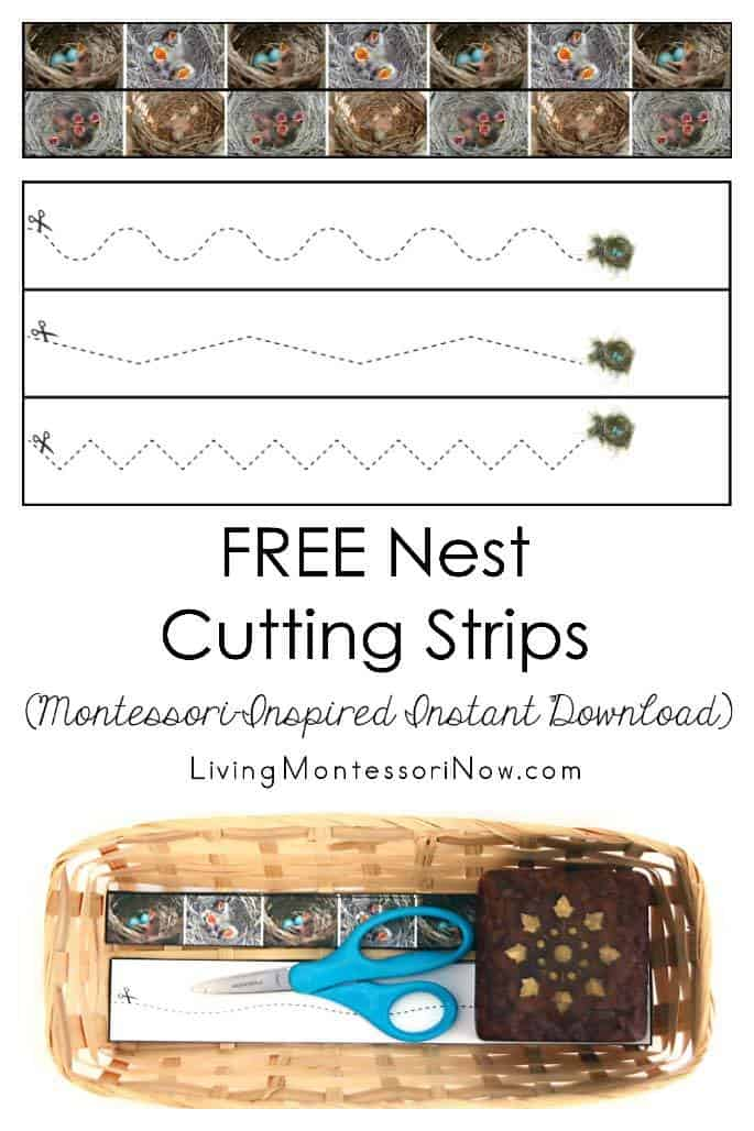 Free-Nest-Cutting-Strips-Montessori-Inspired-Instant-Download