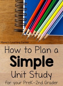 How-to-Plan-a-Simple-Unit-Study-650x878