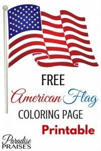 PP-American-Flag-2-683x1024