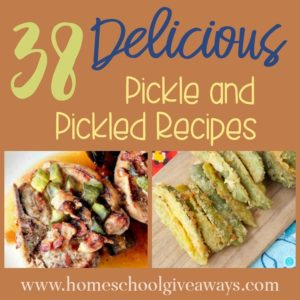 Pickles are a wonderful summer treat! Don't miss these delicious recipes inspired by and containing pickles - perfect for a summer get together! :: www.homeschoolgiveaways.com