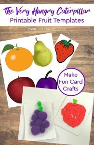 Printable-Hungry-Caterpillar-Fruit-Cards-Craft-pin1