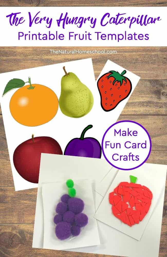 photo relating to Very Hungry Caterpillar Craft Printable named Printable Hungry Caterpillar Fruit Playing cards Craft - Homeschool