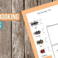 bug-notebooking-pages-fb